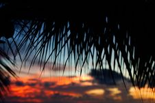 Free Tropical Sundown Royalty Free Stock Photo - 3711125