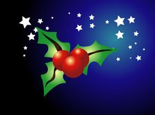 Free A Piece Of Christmas Holly Stock Images - 3721794