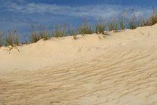 Free Sand Dune Landscape Royalty Free Stock Photo - 3725645
