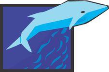 Free Shark Stock Photo - 3725950
