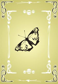 Free Butterfly. Creative Royalty Free Stock Images - 3726389