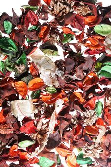 Free Pot Pourri Stock Photography - 3726802