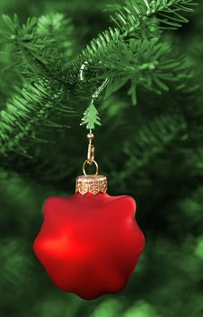 Free Christmas Bauble Royalty Free Stock Image - 3728326