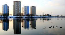 Free Ducks In The Lake Stock Photo - 3730500