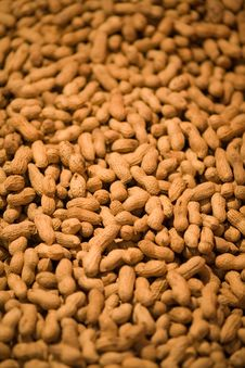 Free Lots Of Peanuts Stock Photo - 3734400