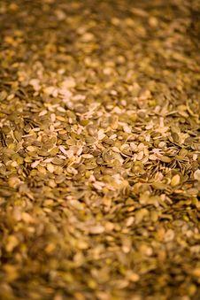 Free Pumpkin Seeds Royalty Free Stock Photo - 3734605
