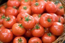Free Red Tomato In A Basket Stock Photography - 3734822