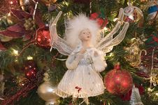 Free Christmas Angel Stock Photo - 3735680