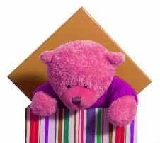 Teddy In A Box Stock Photo