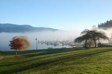 Free Foggy Deep Cove Royalty Free Stock Images - 3743689