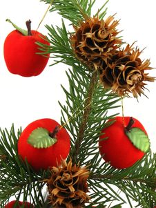 Apples On Christmas Tree Stock Photos