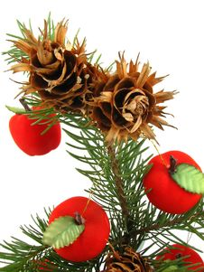 Apples On Christmas Tree Stock Images