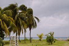 Free Beach In Tropics Stock Photo - 3747870