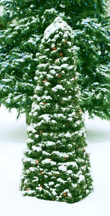 Free Christmas Reason. Royalty Free Stock Photography - 3748917