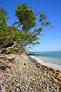 Free Sunshine Coast, Australia Stock Photography - 3751562