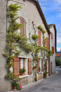 Free The Ancient Houses Covered By An Ivy Royalty Free Stock Photography - 3755237