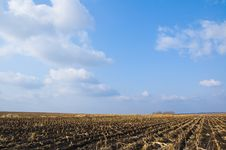 Free Farmland Stock Images - 3752044