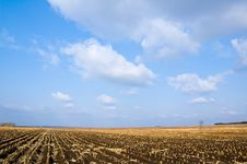 Free Farmland Royalty Free Stock Photos - 3752048