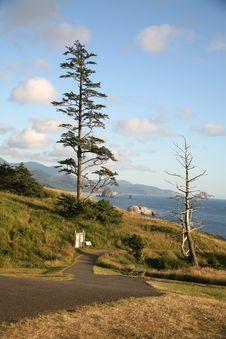 Free Oregon Coast Stock Photography - 3754132