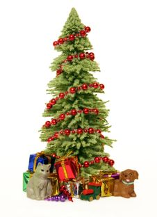 Christmas Tree, Gifts And Pets Stock Photos