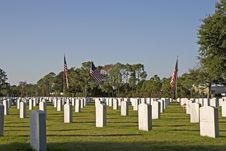 Free American Military Cemetery Stock Photography - 3759172