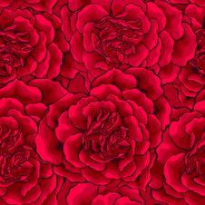 Free Dark Red Roses Heart Seamless Stock Photos - 37536413