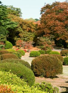 Free Japanese Garden Stock Image - 3761791