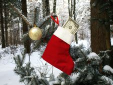 Free Christmas Stocking With One Dollar Bill Stock Photo - 3769440