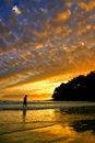 Free Sunshine Coast, Australia Royalty Free Stock Image - 3772746