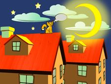 Cat On A Roof Thinking And Watching The Moon Stock Photos