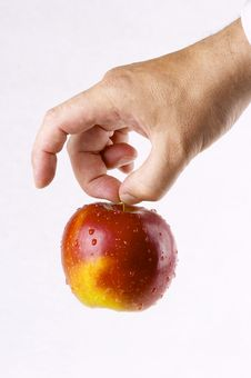 Free Red Apple Royalty Free Stock Photos - 3772038