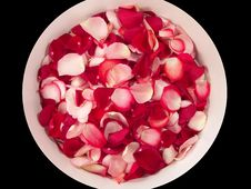 Free Beautiful Red Roses Petal On A Big Bowl Stock Photo - 3777140