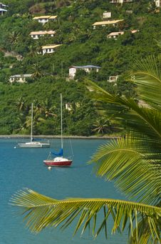 Sailboat View On Tortola BVI Royalty Free Stock Photography