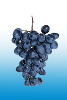 Free A Bunch Of Grapes Stock Image - 3778561