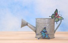 Free Metal Watering Can Stock Image - 3779001