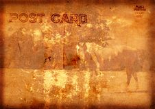 Free Postcard With Horse Royalty Free Stock Photos - 3779378