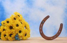 Free Flowers And Horseshoe Stock Image - 3779381