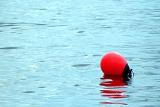 Free Buoy Or Quill Stock Photography - 3779852