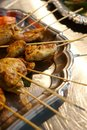 Free Grilled Chicken Skewers Stock Images - 3789864