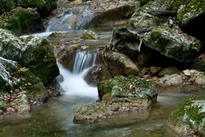 Free Silky Flow Of The Creek Royalty Free Stock Photography - 3780177