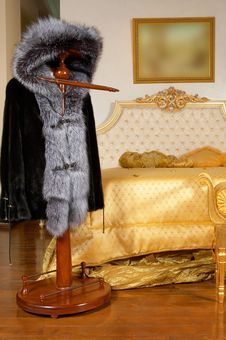 Free Fur Coat On A Hanger Royalty Free Stock Images - 3781079