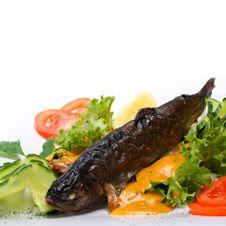 Free Frilled Fish Stock Photo - 3781160