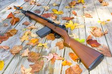 Picture Of A Rifle Surrounded By Leaves Royalty Free Stock Image
