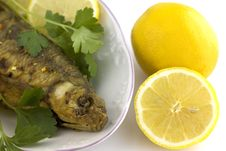 Free Roasted Fish With Lemon Royalty Free Stock Photography - 3784077
