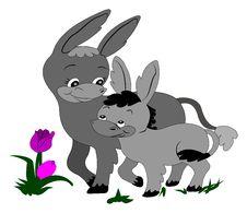 Free Cute Donkeys Royalty Free Stock Photography - 3785497