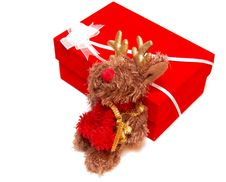 Free Fluffy Moose Toy Sitting By A Red Box Stock Photography - 3786632