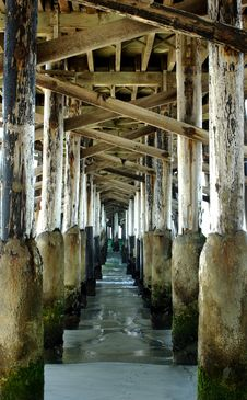Free Pier Pilings Royalty Free Stock Image - 3789306