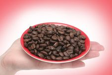 It Is A Lot Of Grains Of Coffee Lay In Hands Stock Images