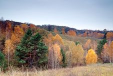 Free All Colours Of The Fall Royalty Free Stock Image - 3792216