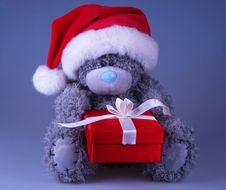 Santa Bear With Gift Stock Images